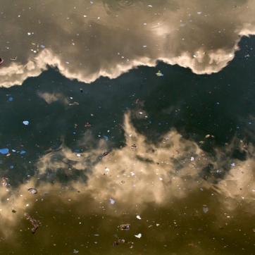 Untitled (Gowanus Canal)