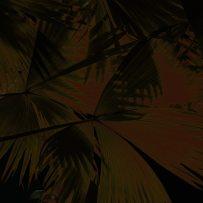 dark leaves print8-1