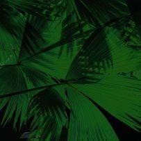 dark leaves print8