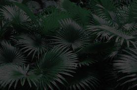 dark leaves print9-1