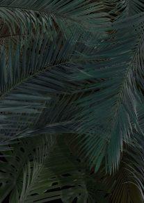 palm tree leaf print