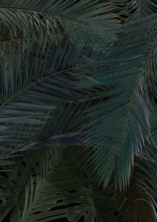 palm tree leaf print