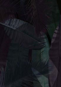 palm tree leaves2 2
