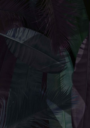 palm tree leaves2 2
